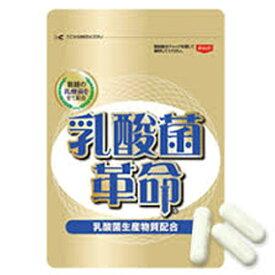 乳酸菌革命 3袋(186粒入 約90日分)ビフィズス菌 酵母 いきいき健康倶楽部