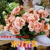 リーガスベゴニアボリアス5号鉢植え籐カゴ入り&ラッピング&リボン付きピンクに赤の複色の花びらが印象的♪フラワーギフト人気品種数量限定ポイント中送料無料エラチオールベゴニアリーガースベゴニア花鉢