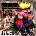 仏花(通常仏花)仏壇のお花 常時仏壇にお供え下さい。五分咲きでお届けご先祖様へのお花和風の伝統でご先祖様へのお供えに仏壇 仏様やお盆などにアレンジ、仏壇、花束、切り花、御供え