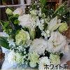 御供えのフラワーアレンジメント季節のお花で当店おまかせでデザイン致します♪故人を偲んで心を込めて贈るお供え花♪生花の色が選べます♪立て札・メッセージカード対応しております【楽ギフ_包装】【楽ギフ_メッセ入力】【送料無料】