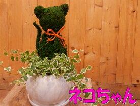 アニマルトピアリーモス♪動物シリーズ♪猫(ネコ)さん ニャンニャン♪Sサイズ タイプ2斑入りフィカスプミラを植え付けています♪陶器鉢植え・受け皿付き 場所取らずでちょこっと置くだけ♪誕生日やお祝い・プレゼントや景品にも♪