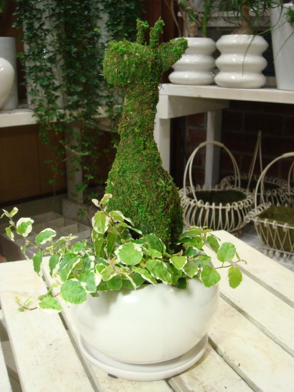 アニマルトピアリーモス♪動物シリーズ♪キリンさん(麒麟)♪Sサイズ斑入りフィカスプミラを植え付けています♪陶器鉢植え・受け皿付き 場所取らずでちょこっと置くだけ♪誕生日やお祝い・プレゼントや景品にも♪