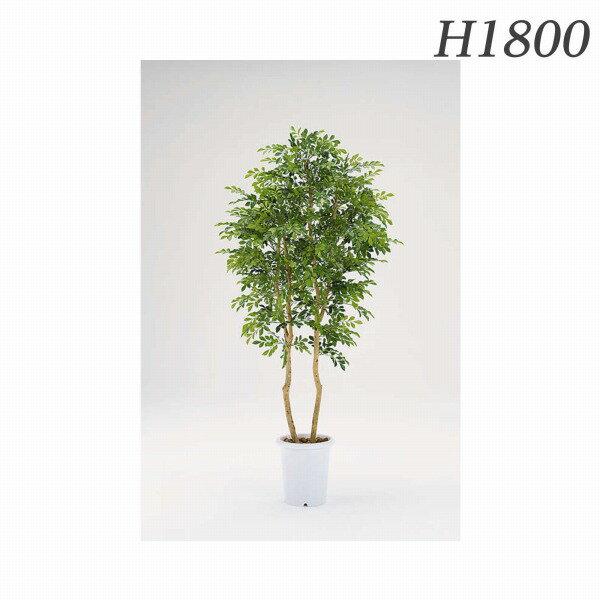 ライオン事務器 人工植物 シルクジャスミン 約H1800mm CK-246 577-79【代引不可】【送料無料(一部地域除く)】