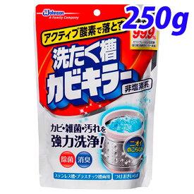 ジョンソン アクティブ酸素で落とす 洗たく槽カビキラー 250g