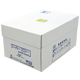 スーパーエコー コピー用紙 マルチ対応 A4サイズ 1箱 5000枚 (500枚×10冊) 用紙 OA用紙 印刷用紙 無地『送料無料(一部地域除く)』