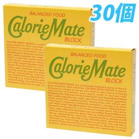 大塚製薬 カロリーメイト ブロック フルーツ味 4本×30個【送料無料(一部地域除く)】