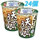 マルちゃん うまいつゆ 天ぷらうどん 68g×24個