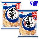 亀田製菓 手塩屋 9枚×5個