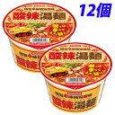 大黒食品 DAIKOKU 酸辣湯麺 大盛 110g×12個