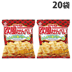 マスヤ ピケエイト 欧風せんべい こんがりバター味 24g×20袋