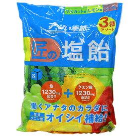 サラヤ Gains 匠の塩飴 マスカット・レモン・スイカ味 2kg