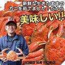 『鳥取』 ボイル松葉ガニ3杯 『代引不可』『日時指定不可』『送料無料(一部地域除く)』