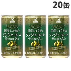 富永貿易 神戸居留地 国産生姜ジンジャーエール 缶 185ml×20缶