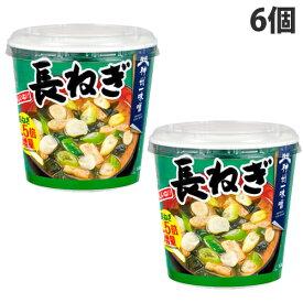 神州一味噌 おいしいね!! 長ねぎ 6個 インスタント 即席 みそ汁 味噌汁 インスタント味噌汁 惣菜 おかず