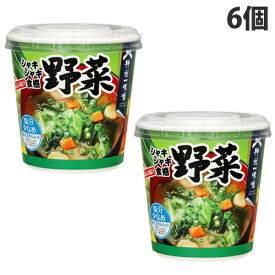 神州一味噌 おいしいね!! 野菜 塩分すくなめ 6個 インスタント 即席 みそ汁 味噌汁 インスタント味噌汁 惣菜 おかず