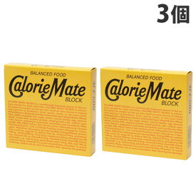大塚製薬 カロリーメイト ブロック チーズ味 81g×3個