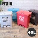 日本製 最大4分別 ツイン ペダルペール ゴミ箱 40L Prale:プラーレ 約幅48×奥行35×高さ51cm ごみ箱 ふた付き ダス…