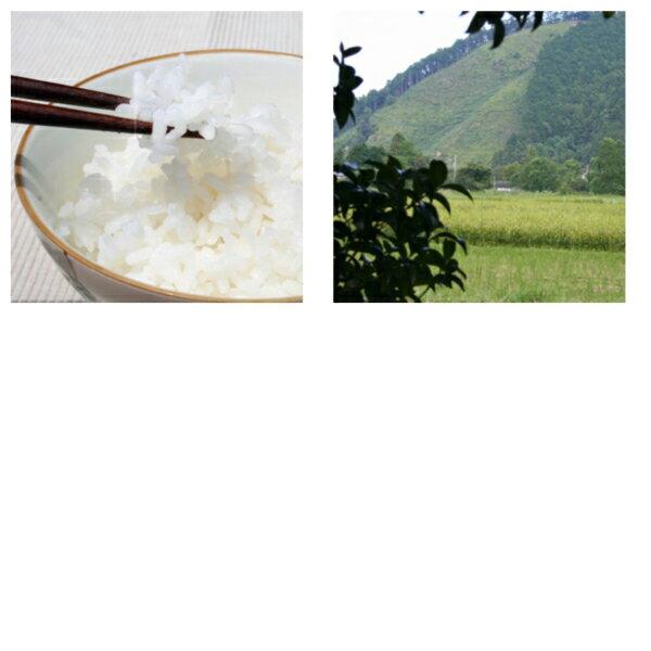 山形県産特別栽培米特A つや姫 10kg[5kg×2袋](送料無料)