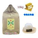 山形県産特別栽培米特A  つや姫 令和元年産 10kg 5kg×2袋