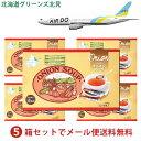 オニオンスープ 5箱セット(1箱15食入り)メール便で全国送料無料