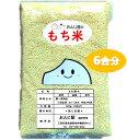 新米 餅米 もち米【送料無料】 1kg 以下 農家直送 減農薬 三重県産 白米 900g(6合分) カグラモチ 米 お米 令和3年産 …