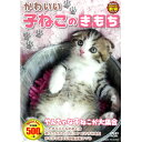 DVD かわいい子ねこのきもち CCP-8007 子猫 猫 撮りおろしかわいい動物シリーズ どうぶつ ペット ホビー 癒し 動画 映…