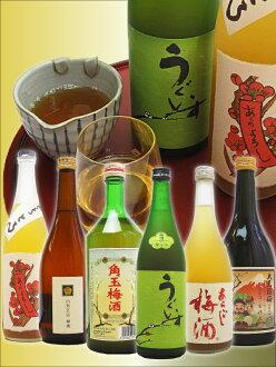 Japan plum brandy and carefully selected sake brewery plum 6 piece set