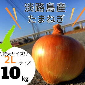 【2Lサイズ】 淡路島産 玉ねぎ 10kg 送料無料(北海道・沖縄を除く)