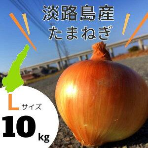 【Lサイズ】淡路島産 玉ねぎ 10kg 送料無料(北海道・沖縄を除く)