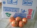 【2Lサイズ】 淡路島産 玉ねぎ 10kg 送料無料