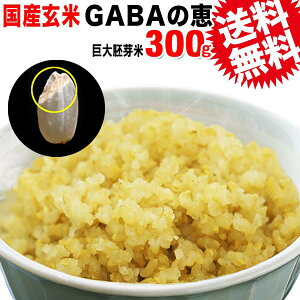 GABAの恵 国産 巨大胚芽米 ギャバ 300g×1袋 玄米《白米モードで炊けます》送料無料 国内産100% お米 スーパーフード 食物繊維・ビタミン たっぷり 黒米 赤米 ※日時指定不可【代引き決済不可
