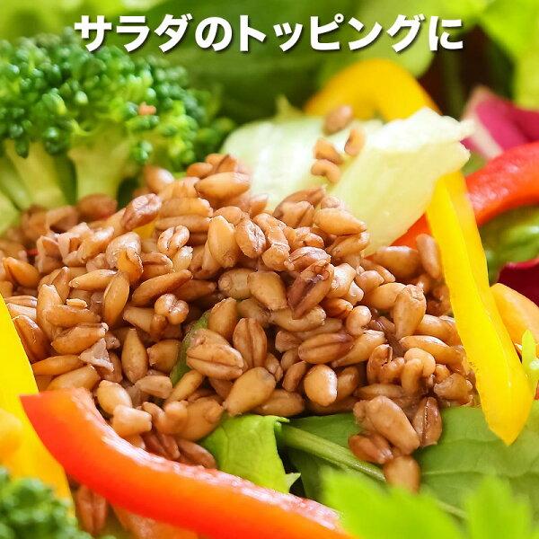 【8月27日以降の発送予定】スーパー大麦バーリーマックス180g×1袋送料無料メール便限定⇒送料0円