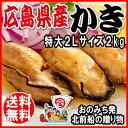 2L 送料無料 カキ 鍋セット/広島県産(業務用)冷凍 牡蠣(かき)特大1kg(正味850g)×2袋 広島産 カキフライ