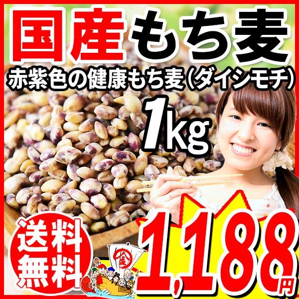 もち麦 国産 1kg ダイシモチ 送料無料 もちむぎ