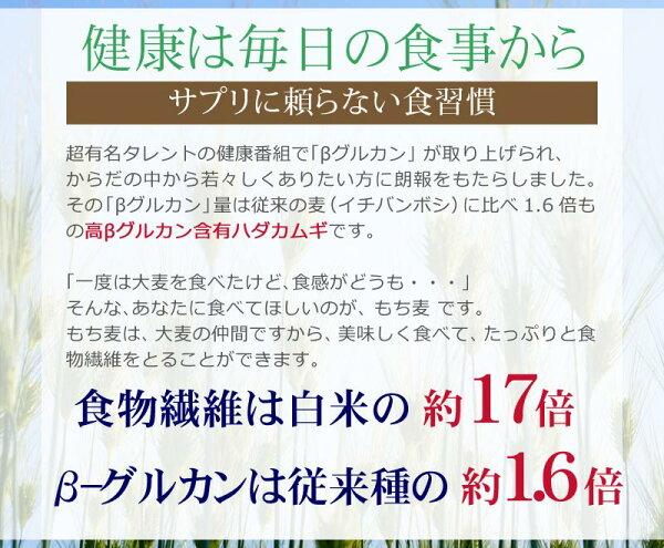 もち麦国産900gダイシモチ送料無料もちむぎぽっきり赤紫茶色0.9kg×1袋