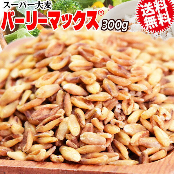 大麦押麦国産500g×1袋送料無料βグルカンメール便限定⇒送料0円532P14Oct16