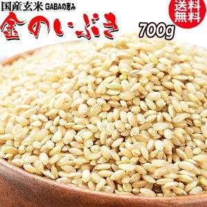 国産 玄米 金のいぶき 700g×1袋 GABAの恵 巨大胚芽米 ギャバ 玄米《白米モードで炊けます》送料無料 国内産100% お米 スーパーフード 食物繊維・ビタミン たっぷり ※日時指定不可 雑穀 hs-01