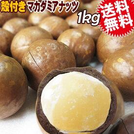 マカダミアナッツ 送料無料 殻付き マカデミアナッツ 1kg×1袋 オーストラリア産 ロースト 製菓材料 ナッツ おつまみ おやつ ※専用のナッツクラッカーが必要です パルミトレイン酸
