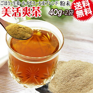 美活爽茶 40g×2袋 ルイボスティー ごぼう茶 焙煎麦 生姜 粉末茶