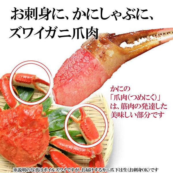 生ズワイガ二カニ爪ポーション500g×1袋爪ポーション爪肉蟹セット