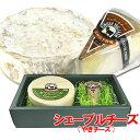 5%還元 【送料無料】木村山羊牧場 やぎチーズ(シェーブルチーズ) 100g×2個セット【味覚の秋フェアクーポン】