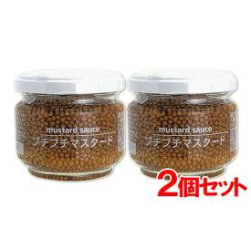 [限定20%OFFクーポン]プチプチマスタード(mustard sauce) 100g×2 ファインド・ニューズ