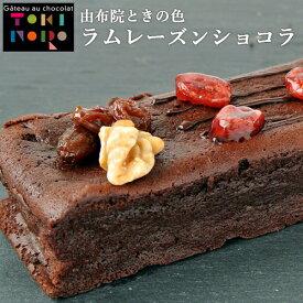 米粉 ラムレーズンショコラ 190g(17cm×5.5cm×3cm) グルテンフリー 由布院ときの色【送料無料】
