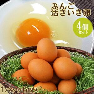 【たっぷりプレゼント付き】ぶんご活きいき卵 6個入り×4パック(24個セット) 大分ファーム/農場HACCP認証農場【送料無料】