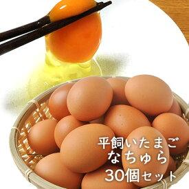 平飼い卵 なちゅら 10個入り×3パック【合計30個(25個+保証分5個)】大分県産 梶原種鶏孵化場【送料無料】