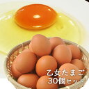 楽天市場 平飼い卵 なちゅら 10個入り 12パック 1個セット 大分県産 梶原種鶏孵化場 送料無料 おんせん県おおいた Online Shop