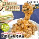 ピリ辛風味のねぎ入り味噌タレ 国産ネギみそ納豆(40g×3) 12個セット 無添加みそ 大分県産ネギ 二豊フーズ【送料無料】