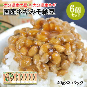 5%還元 ピリ辛風味のねぎ入り味噌タレ 国産ネギみそ納豆(40g×3) 6個セット 無添加みそ 大分県産ネギ ニ豊フーズ【送料無料】