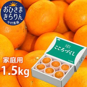 5%還元 大分県産オレンジ 家庭用 おひさまきらりん 1.5kg (清見タンゴール/温州みかん/あまくさオレンジ) 有機肥料 温室 今村農園【送料無料】【お歳暮ギフトクーポン】