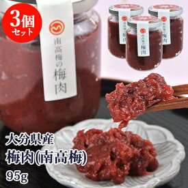 大分県産 南高梅の梅肉 95g×3個セット 無添加 梅干し うめペースト 塩分17% 調味料 森梅園 大山町の梅